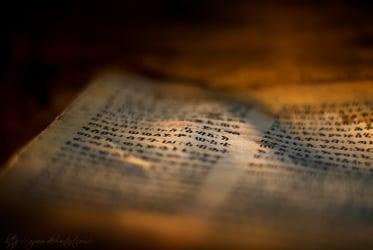 Apprivoiser la Bible