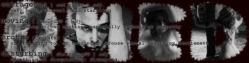 outrageous - moving - erotic - disturbing