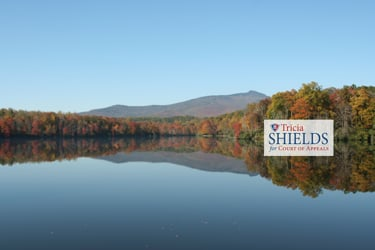 Tricia Shields for NC Court of Appeals