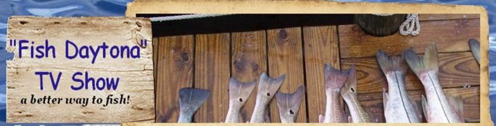 Fish Daytona