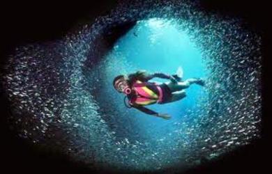 Underwater endoscopy (UWE)