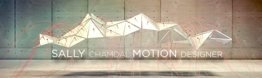 Sally Chamdal - Motion Designer