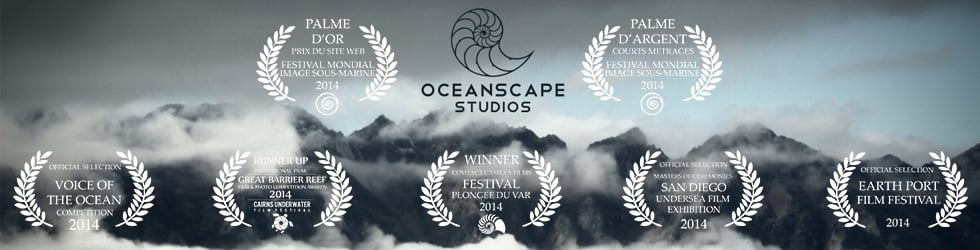Oceanscape Studios