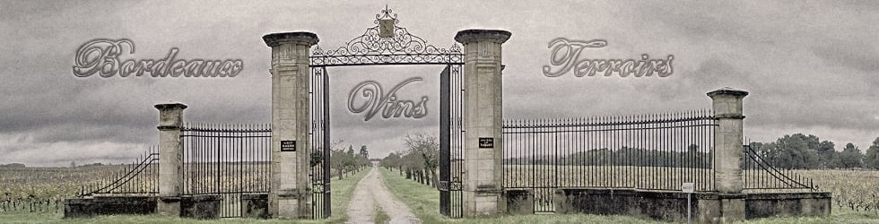 Bordeaux, Vins & Terroirs