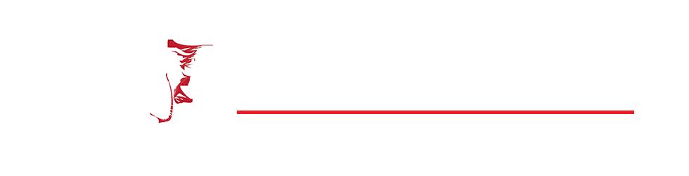 קבוצת IMG