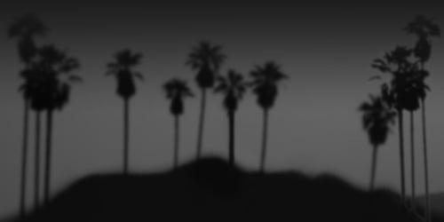 The Noir Series