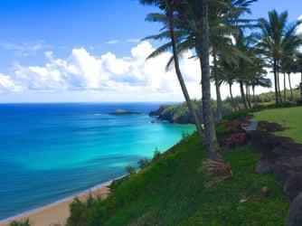 hawaiiwebvideo.com