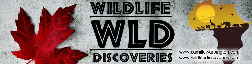 Wildlife Discoveries