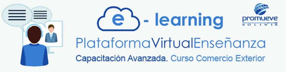 Capacitación Avanzada. Curso Virtual en Comercio Exterior