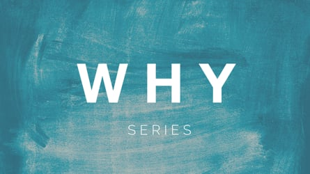 WHY? Series