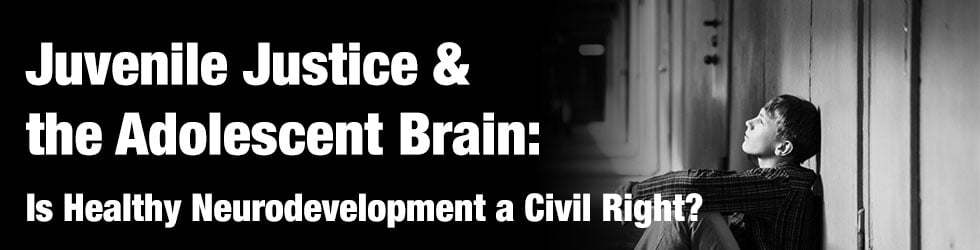 Juvenile Justice & the Adolescent Brain: Is Healthy Neurodevelopment a Civil Right?