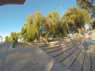 Vicarius día en el Park