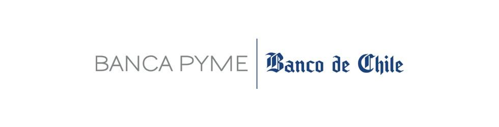 BANCA PYME BANCO DE CHILE 2015