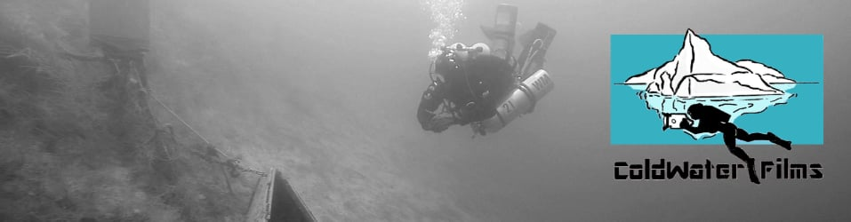 Scuba Diving with Diverl