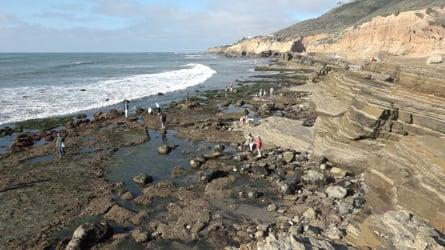 California Tide Pool Locations