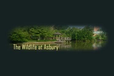 Asbury Wildlife Habitat