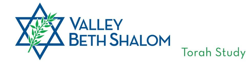 Shabbat Morning Torah Study