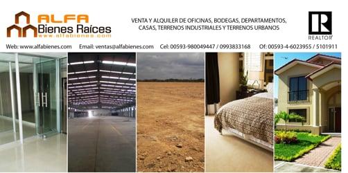 Bodegas en alquiler o venta - Ecuador - ALFA Bienes Raíces