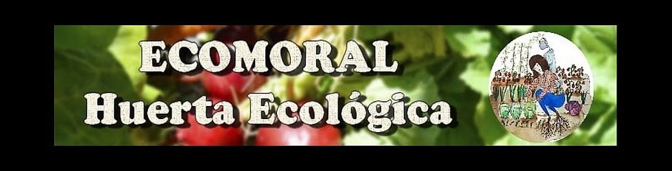 Ecomoral
