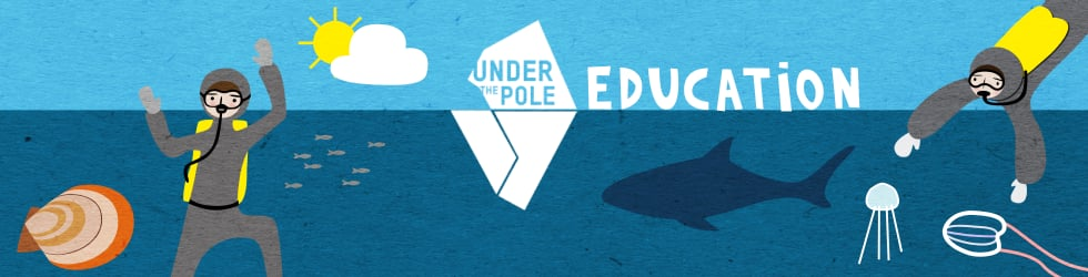 Under The Pole Education