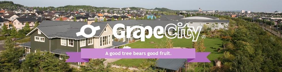 GrapeCity Corporate