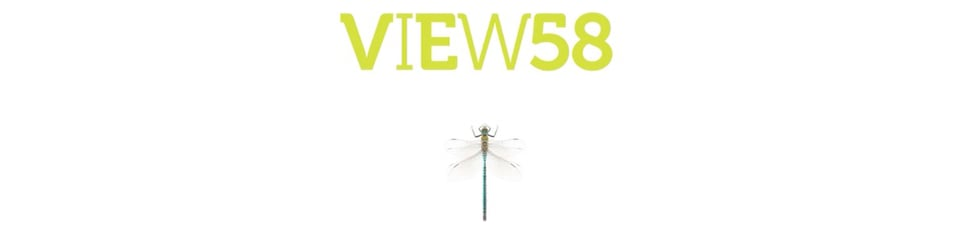 VIEW58