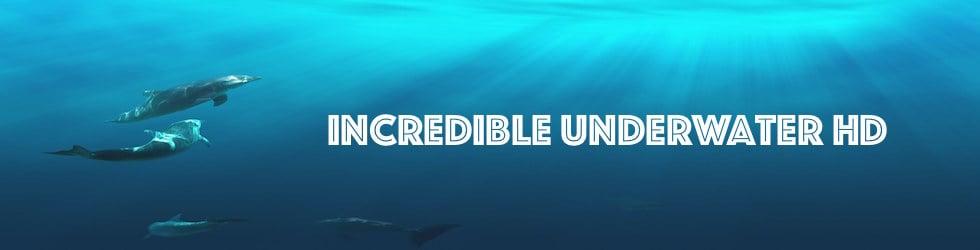Incredible Underwater Footage