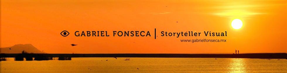 Gabriel Fonseca Visual Storyteller