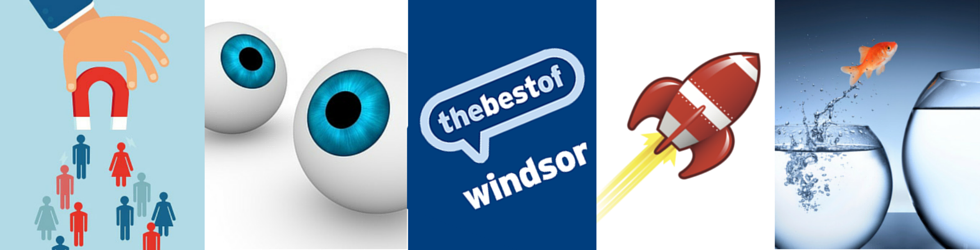 The Best of Windsor and Maidenhead