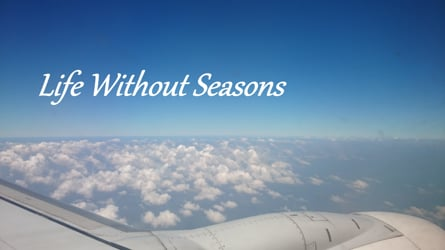 Life Without Seasons