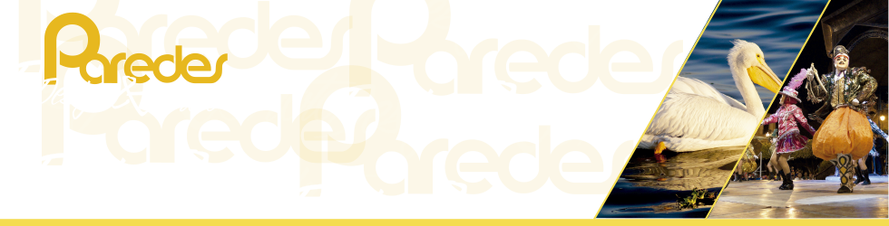 PAREDES Design & Photo