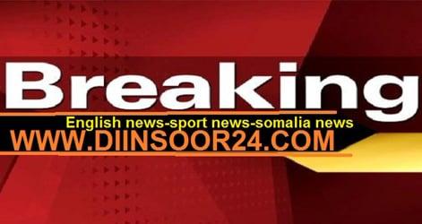DIINSOOR NEWS NETWORK TV