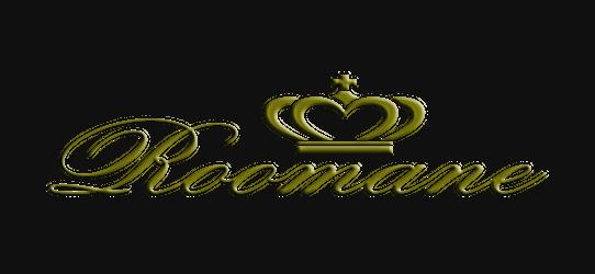 罗曼妮E婚庆策划