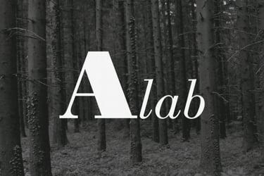 Activist Art Laboratory A-Lab