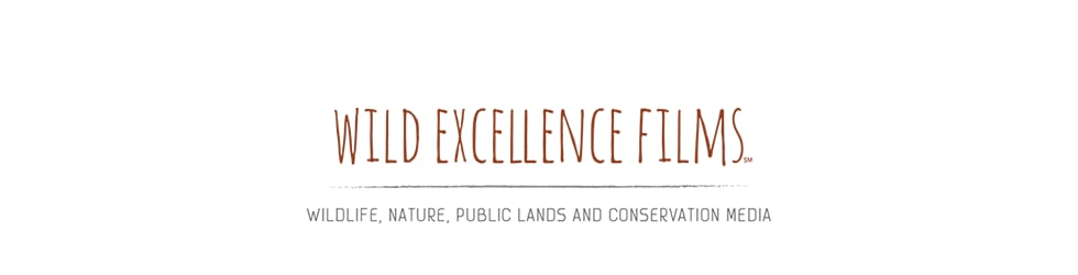 Wild Excellence Films