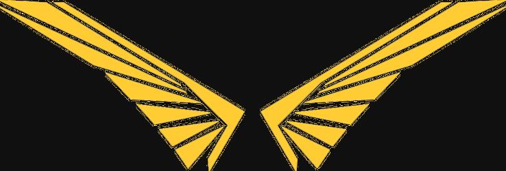 Flyingpixx Produktionen