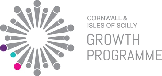 Growth Programme