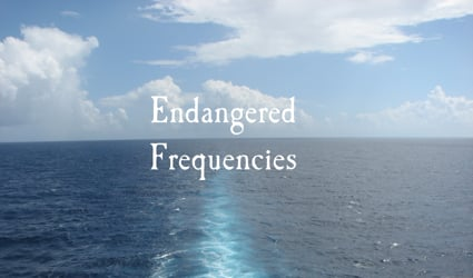 Endangered Frequencies