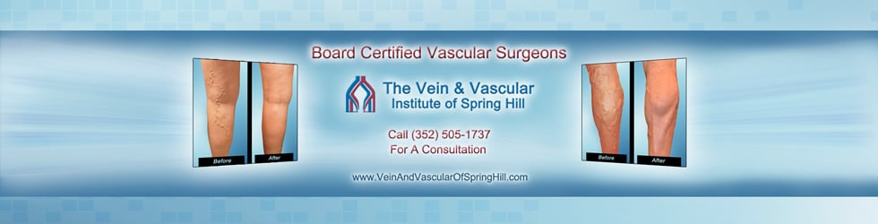 Vascular Surgeons Spring Hill FL