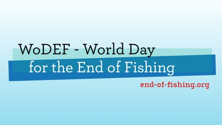 WoDEF – World Day for the End of Fishing