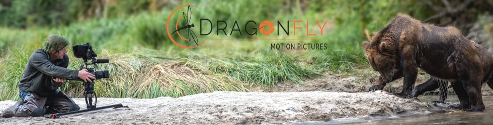 DRAGONFLY MOTION PICTURES