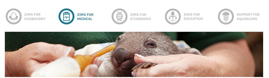 ZIMS Medical - Release 2