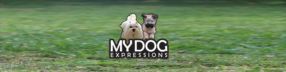 My Dog Expressions