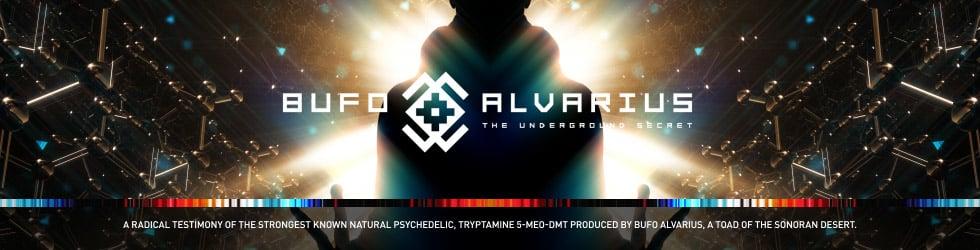 Bufo Alvarius The Underground Secret