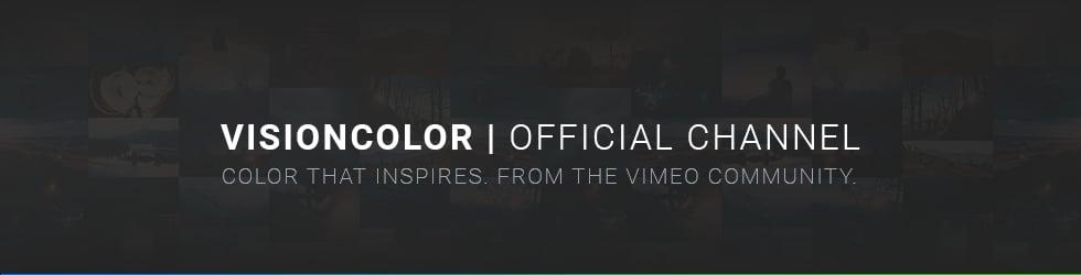 VisionColor