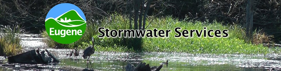 City of Eugene Staff Training: Stormwater Services