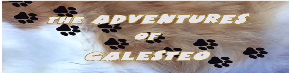 Adventures of Galesteo