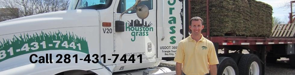 Houston Grass - Pearland Sugar Land Missouri City Katy