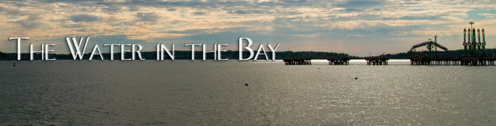 The Water in the Bay