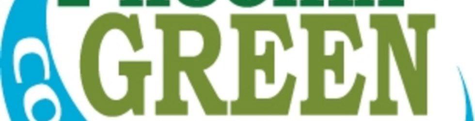 Phoenix Green Home Concepts